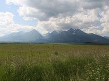 vysoké tatry , štíty , hory , pohorie, TANAP, lúka, rastliny, tráva