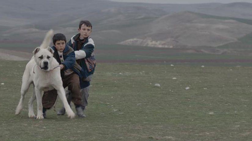 Film Sivas získal na festivale v Benátkach...