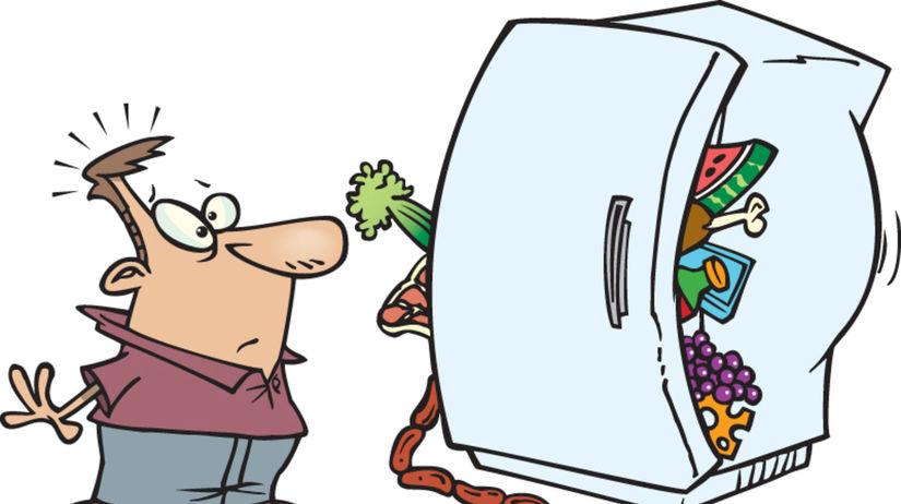 chladnička, minimálna trvanlivosť, spotreba