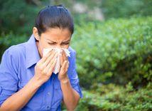 alergia, nádcha, prechladnutie