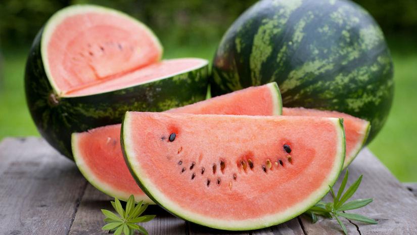 melón, leto. výživa