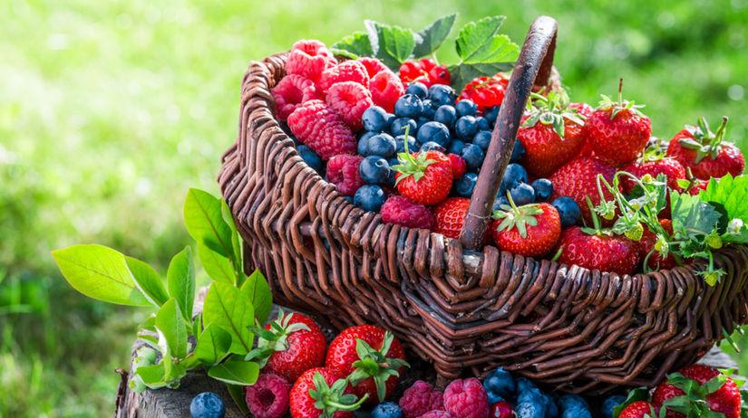 bobuľové ovocie, antioxidanty, lesné plody