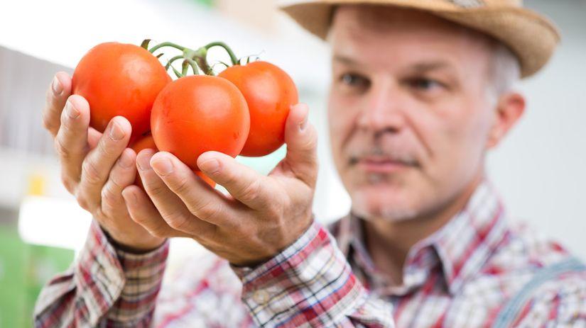 paradajky, zelenina, farmár