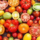 paradajky, rajčiny, zelenina