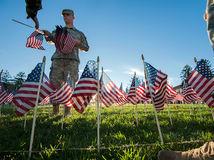 USA, vlajka, americká zástava, cintorín, Virgínia, vojak, armáda,
