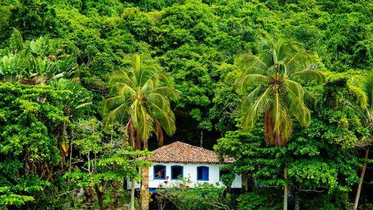 Costa Verde, Brazília, dom, palmy, prales, džungľa