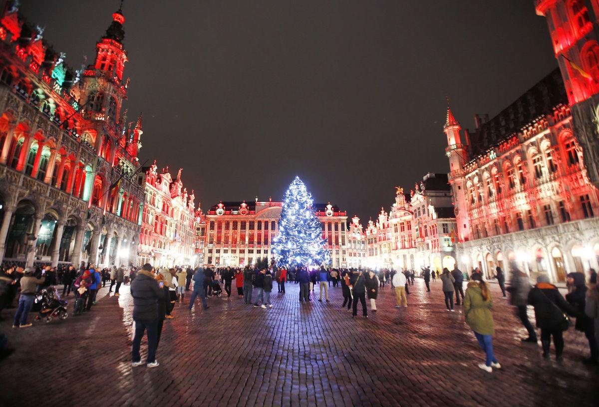 Vianoce, vianočné stromčeky, vianočné stromy, námestie, svetlá, Belgicko, Brusel