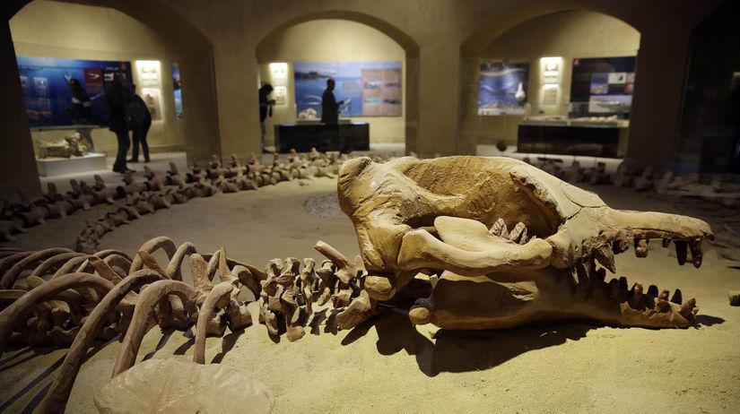 Egypt, múzeum, kostry, vyhynuté veľryby