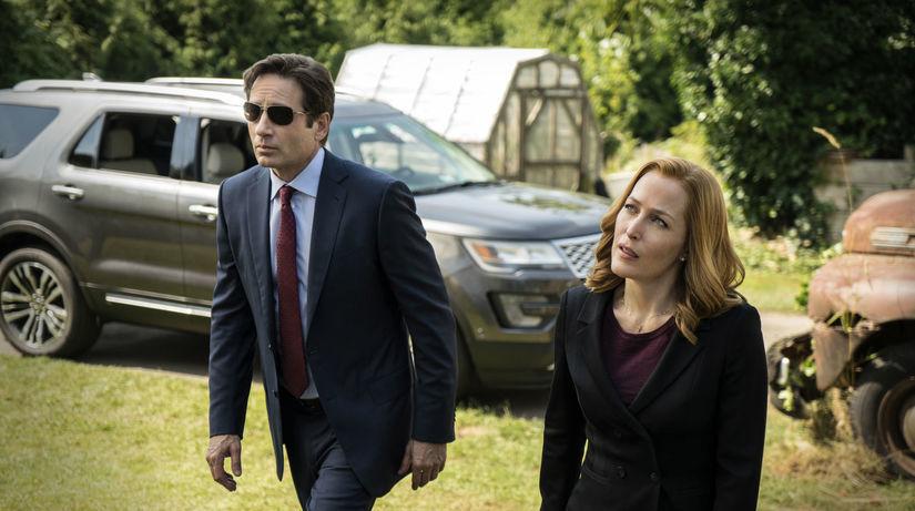 David Duchovny ako Fox Mulder a Gillian...