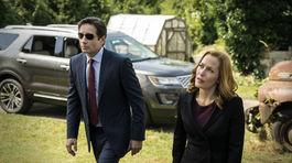 David Duchovny ako Fox Mulder a Gillian Anderson ako Dana Scullyová