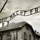 Osvienčim, holokaust, pracovný tábor, koncentračný tábor,