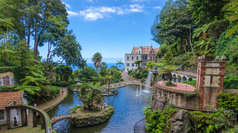 Funchal, Portugalsko, záhrada, voda, potok,...