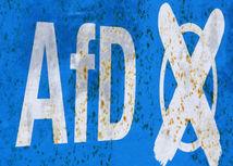 AfD, Alternatíva pre Nemecko
