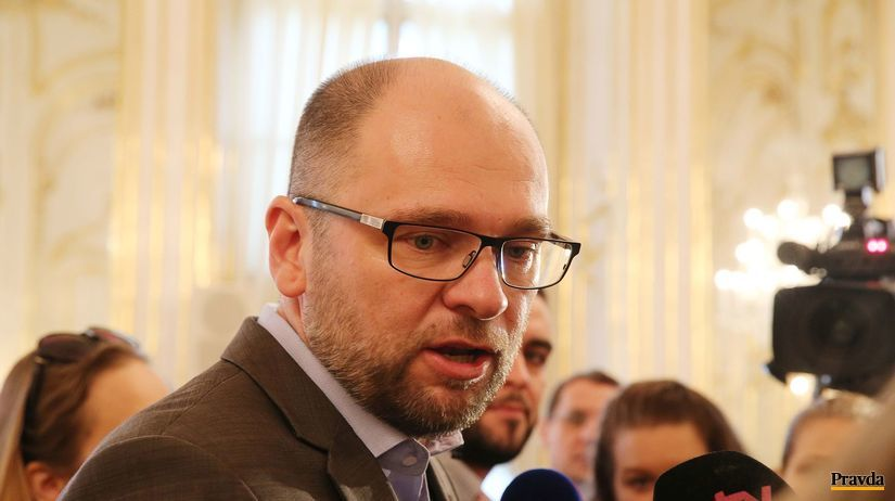 Richard Sulik, SaS