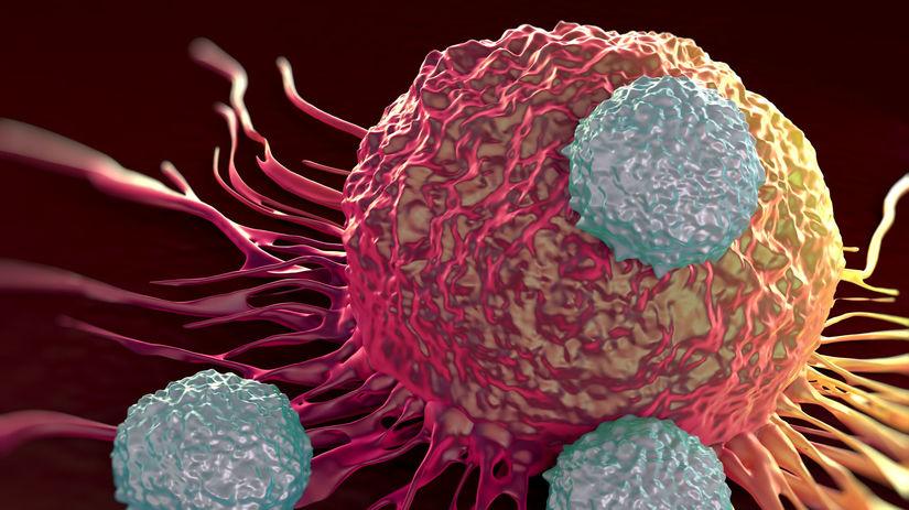 bunka, vírus, imunita, rakovina, choroba,