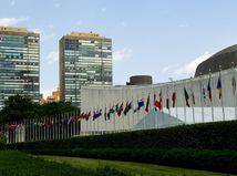OSN, Unicef