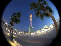 Dauhá, Doha, Katar, Qatar, palmy, mrakodrap