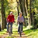 cyklisti, cyklistika, bicykle, príroda, šport, pár, dvojica, les, stromy,