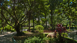 Hongkong, park