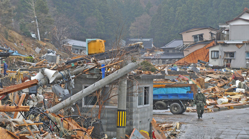 japonsko, fukušima, cunami, kravy