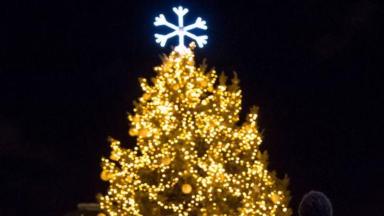 Bratislava, Vianočné trhy, stromček, Vianoce