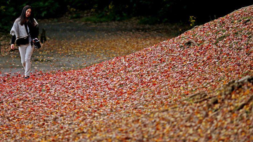 listy, jeseň, prechádzka,