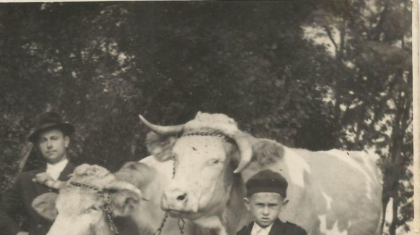 Jozef Ďurica, družstvo, gazdovstvo, dobytok