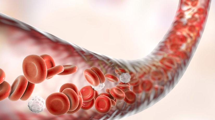 Darovanie krvnej plazmy za peniaze v Raksku Vae peniaze