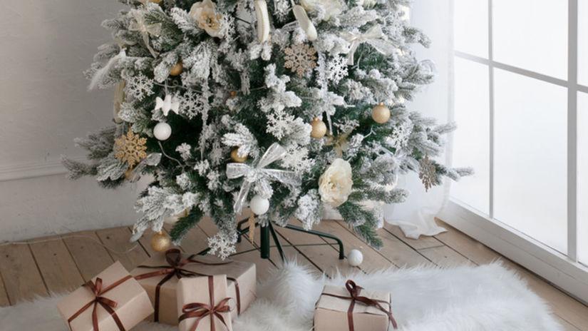 Vianočný stromček môže byť tento rok aj biely,...