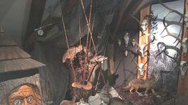 Slovenské múzeum ochrany prírody a jaskyniarstva, SMOPaJ, Liptovský Mikuláš