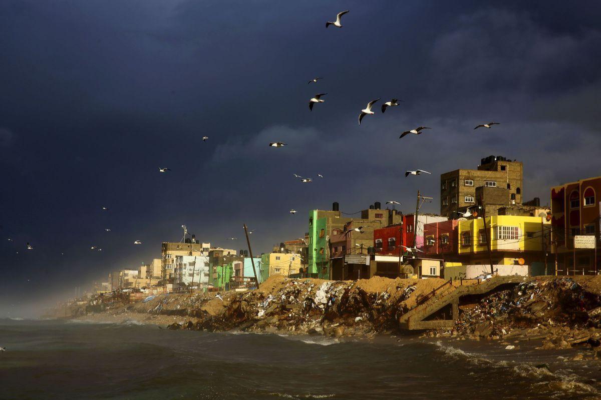 more, vtáky, dedina, domy, čajky, búrka, mraky, Gaza, Stredozemné more, Palestína