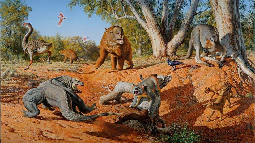 megafauna, Austrália, príroda, zvieratá,...