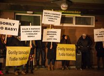 protest, gorila, vazovova