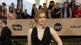 Herečka Amy Adams si obliekla šaty Brandon Maxwell.