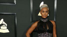 Sibley prichádza na 59. ročník Grammy.