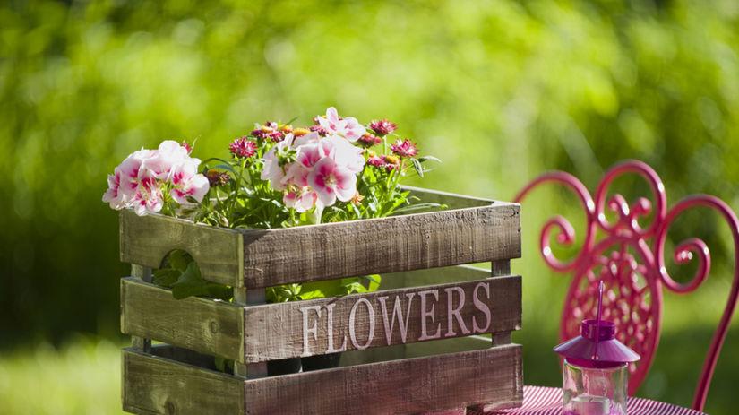 jar, záhrada, kvety