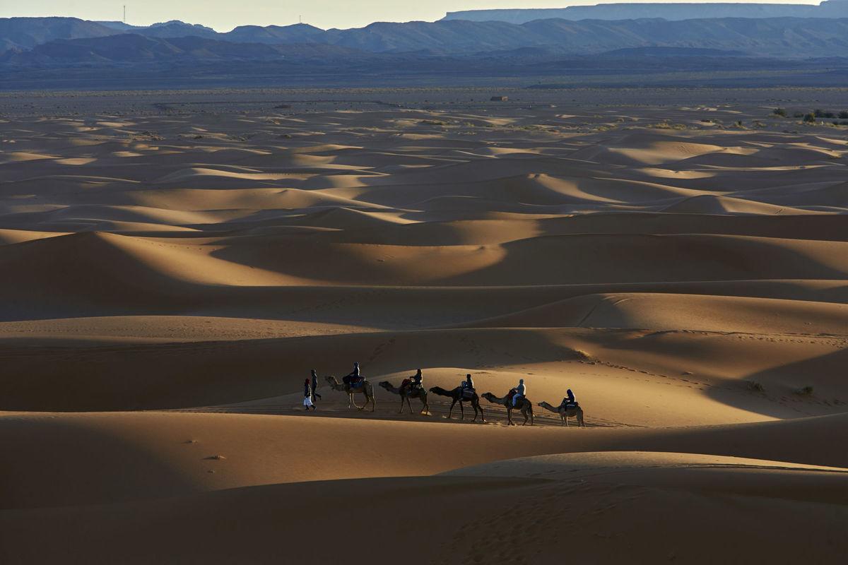púšť, ťavy, karavána, Maroko, pohorie Atlas