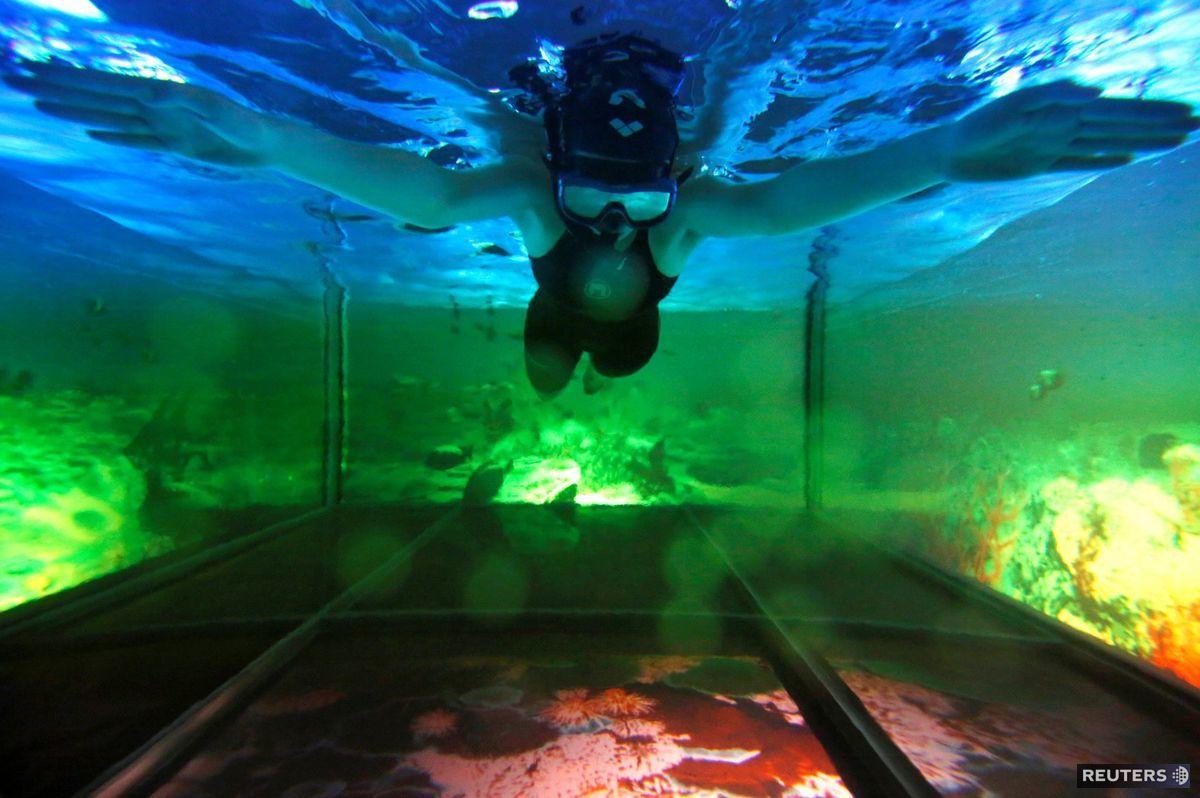 plávanie, bazén,