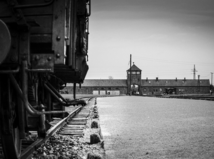 kolaje, koncentračný tábor, auschwitz