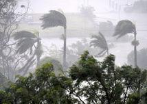 Debbie, cyklón, vietor, dážď, palmy