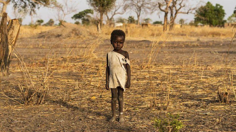 Afrika, dieťa, černoch, chlapec, hlad, buš,...