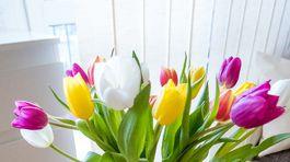 a2a12679d59a7 Tulipány a Veľká noc? Na stôl sa rozhodne hodia, pozrite sa