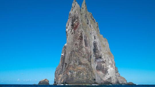 Veža uprostred mora je domovom najväčšieho hmyzu na svete