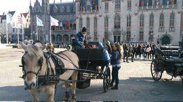 Bruggy, Belgicko, námestie, voz, kôň,