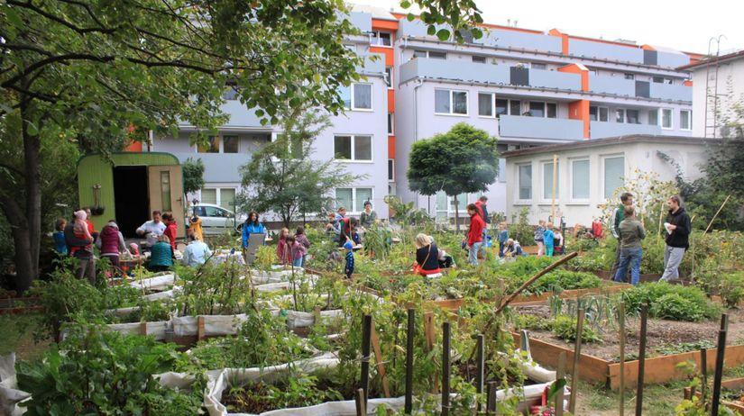 záhrada, krasňany, zelovoc