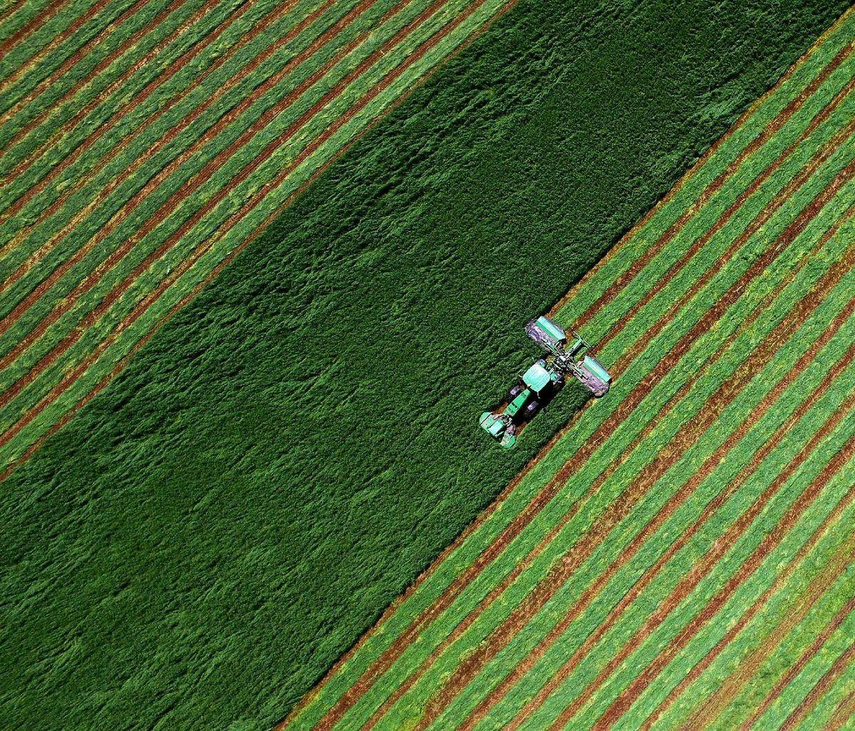 Iowa, pole, traktor, farmár, poľnohospodárstvo, obilie