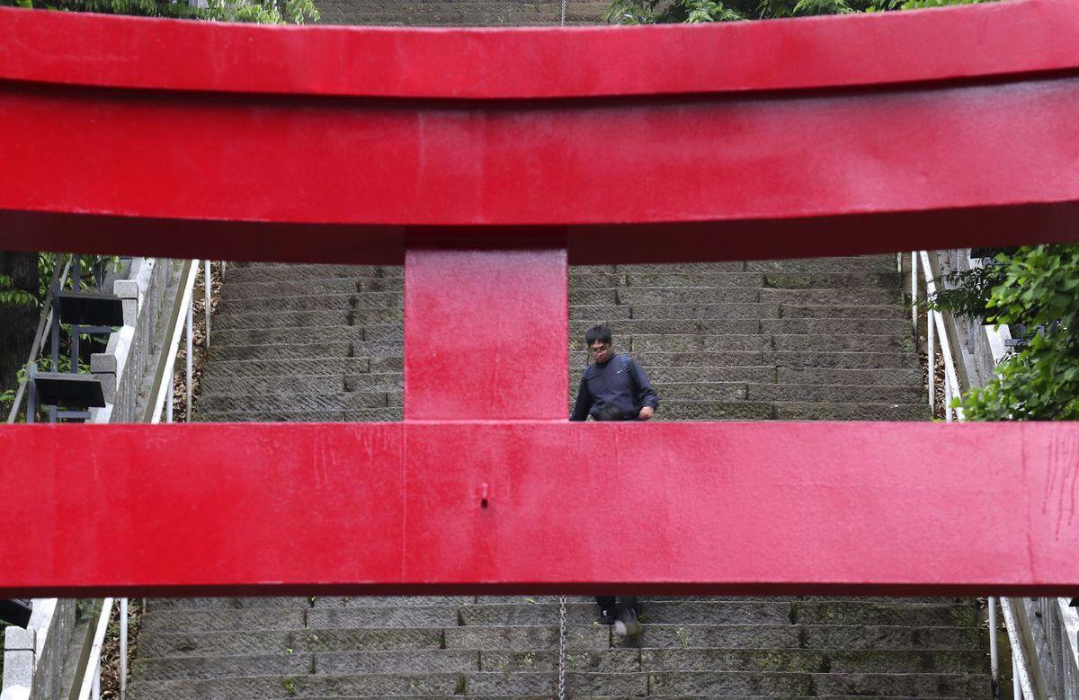 Japonsko, schody, Tokio, svätyňa