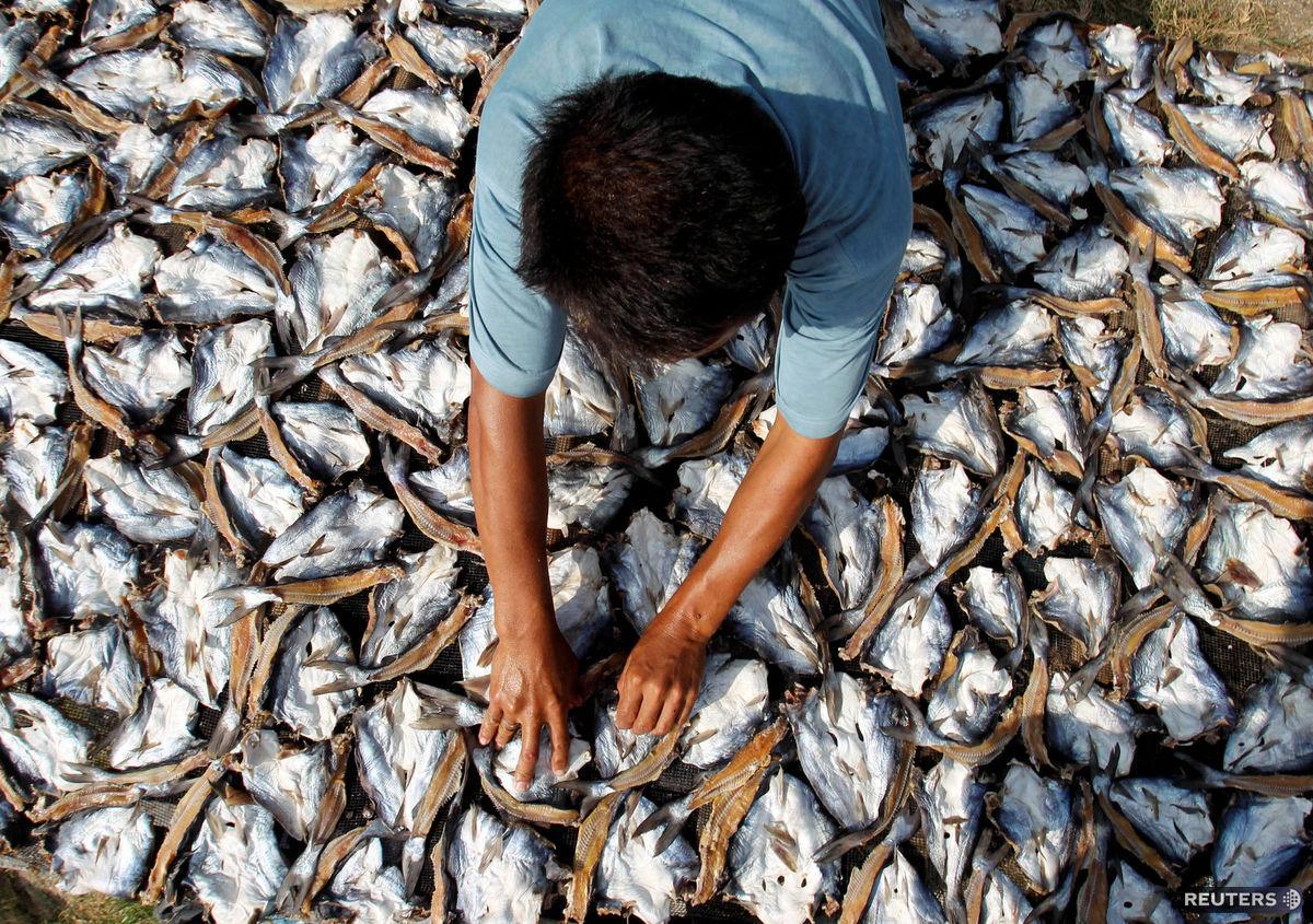 ryby, sušenie, Filipíny
