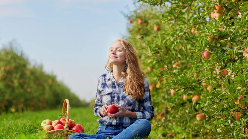 žena, jablká, košík, lúka, piknik