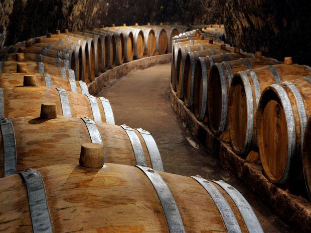 Obrázok Salve, Tokaj, víno kráľov, kráľ vín